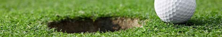05_golf