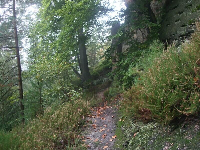 Wanderweg5901bf47259c8