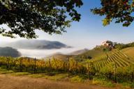 Durbach-mit-Schloss-und-Nebel